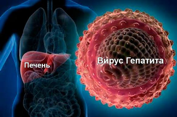219723 five - Какой препарат от гепатита С самый эффективный?