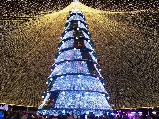 elka kazan - Самые красивые новогодние елки России и Европы 2020