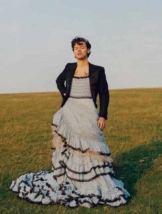 Garri Stajls - Как Гарри Стайлс стирает гендерные рамки в моде