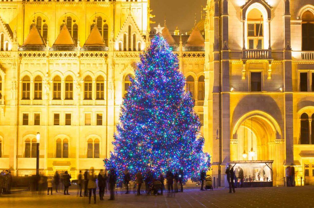 elka 1024x680 - Самые красивые в мире новогодние елки 2021
