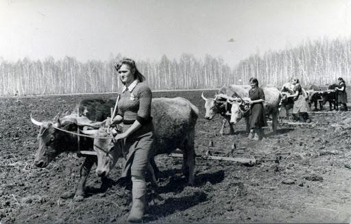 zhenshhiny v tylu - Мужские кальсоны и белье из парашютов: что носили женщины во время Великой Отечественной войны